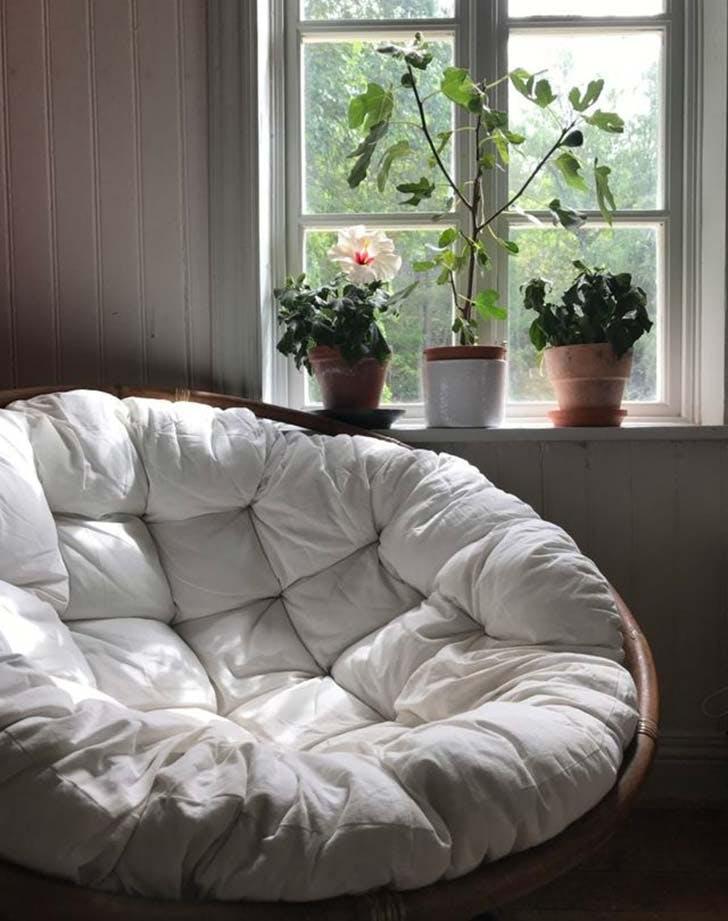 winter garden room11