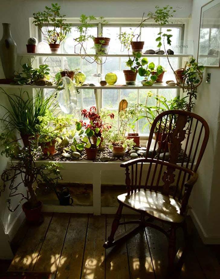 winter garden room91
