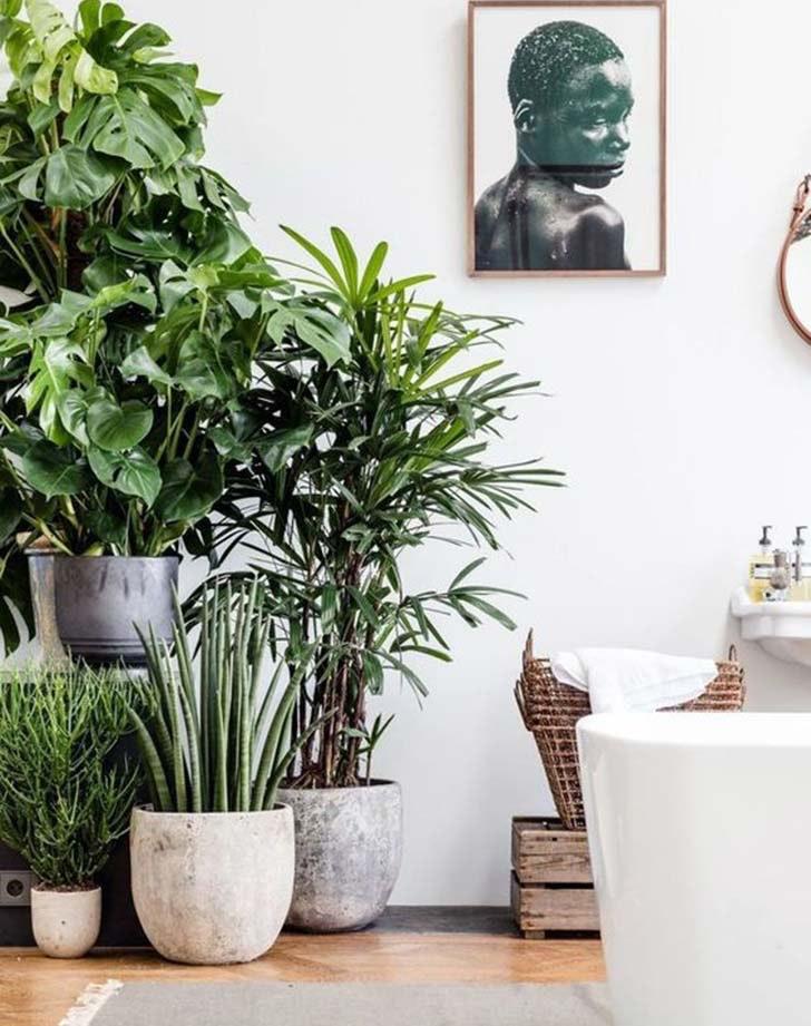 Attractive Winter Garden Room 4