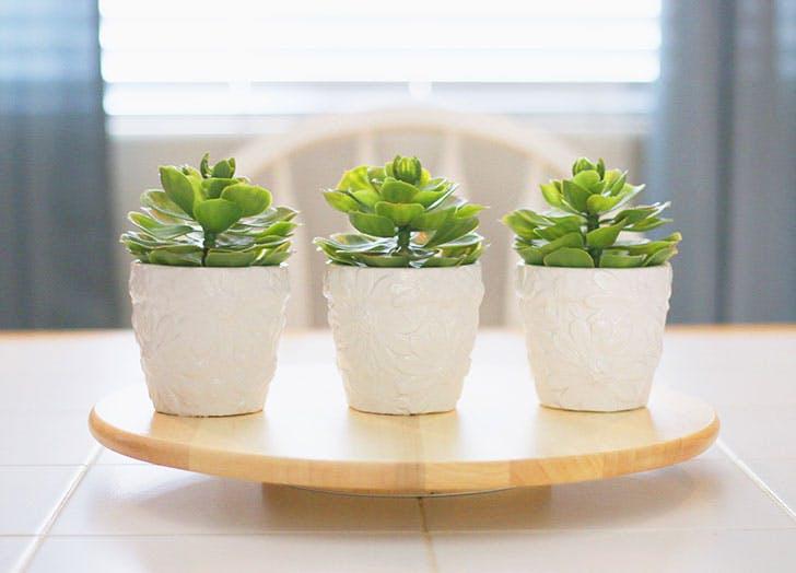 Houseplants sitting on table