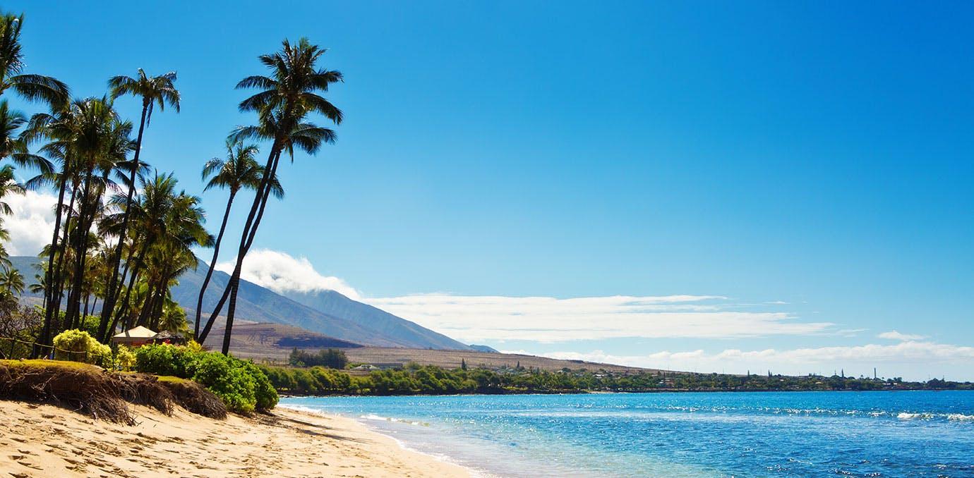 Maui beach in Hawaii