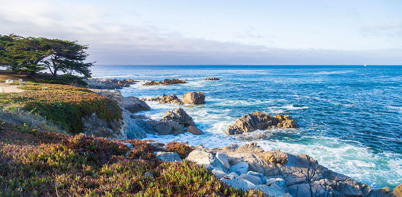 PACIFIC GROVE in CALIFORNIA