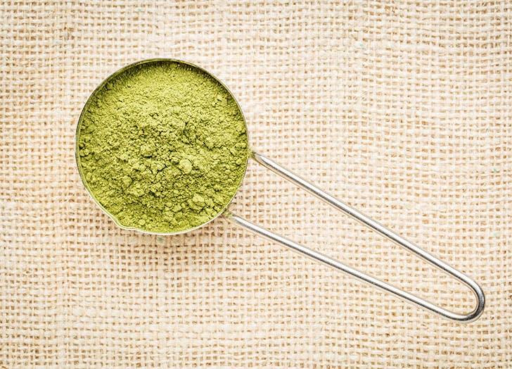 Scoop of green moringa powder