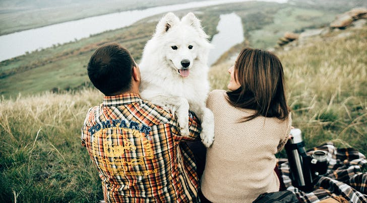 New Survey Says Your Dogs Approval of Your Boyfriend Matters More Than Your Family's