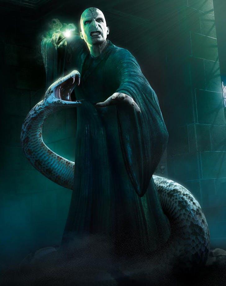Voldemort Nagini