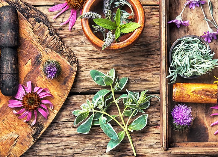 herbs flowers tray