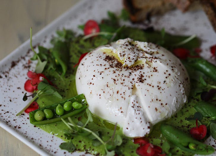murrays cheese burrata