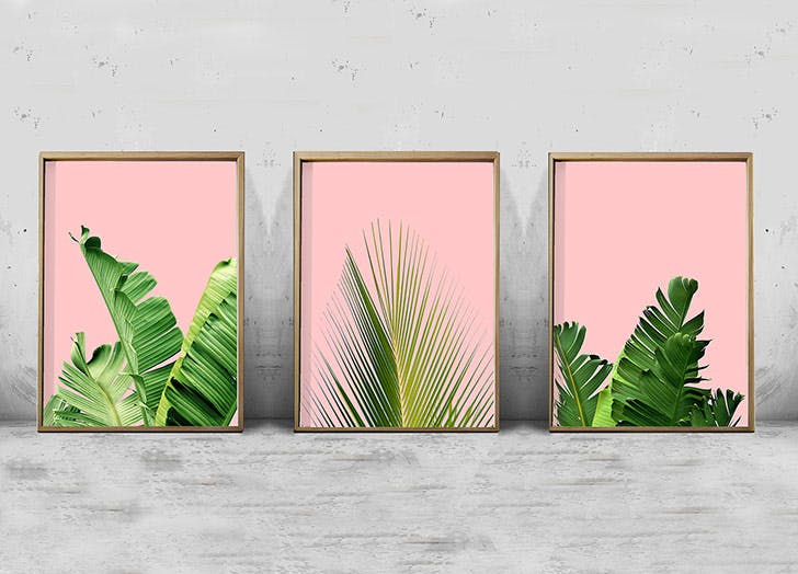 palm leaf prints pink background