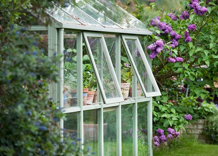 she shed greenhouse