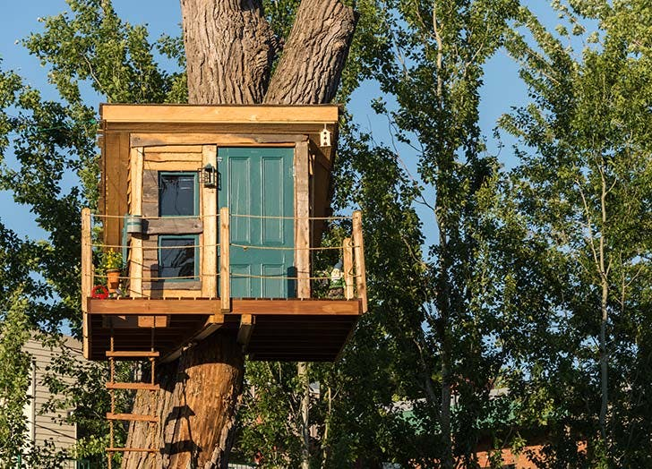shed shed treehouse