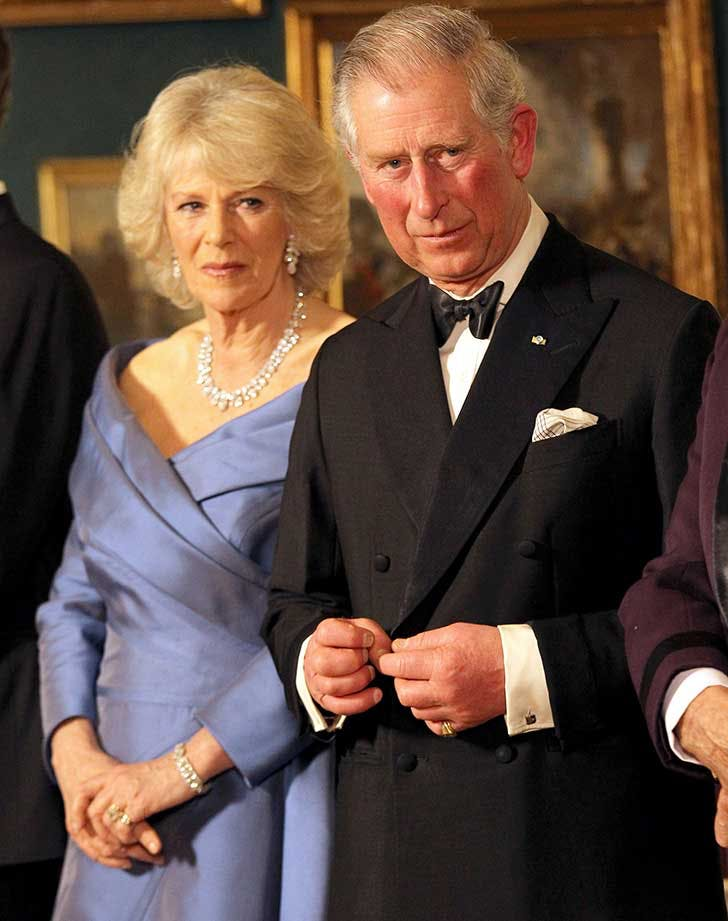Prince Charles and Camilla in recieving line