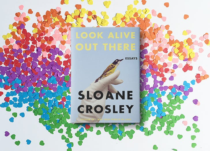 look alive out there sloane crosley 1