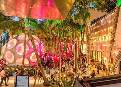 miami trees colorful dome400