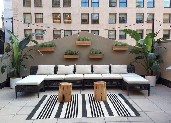 rooftop black white garden