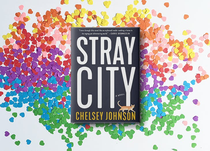 stray city chelsey johnson