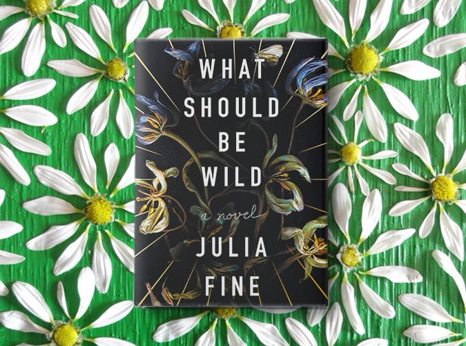 what should be wild julia fine