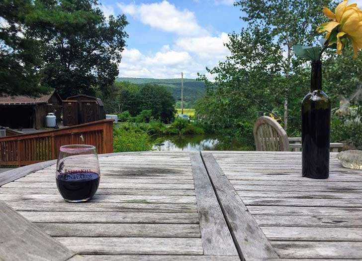 bashakill vineyards NY