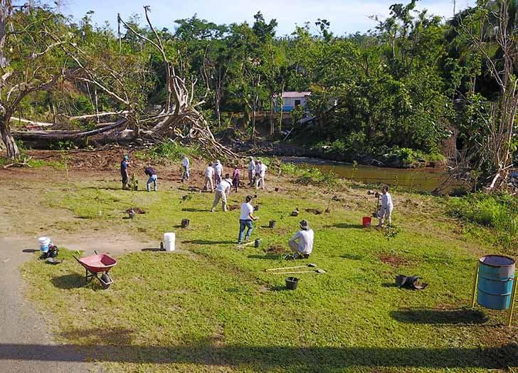 para la naturaleza puerto rico volunteers