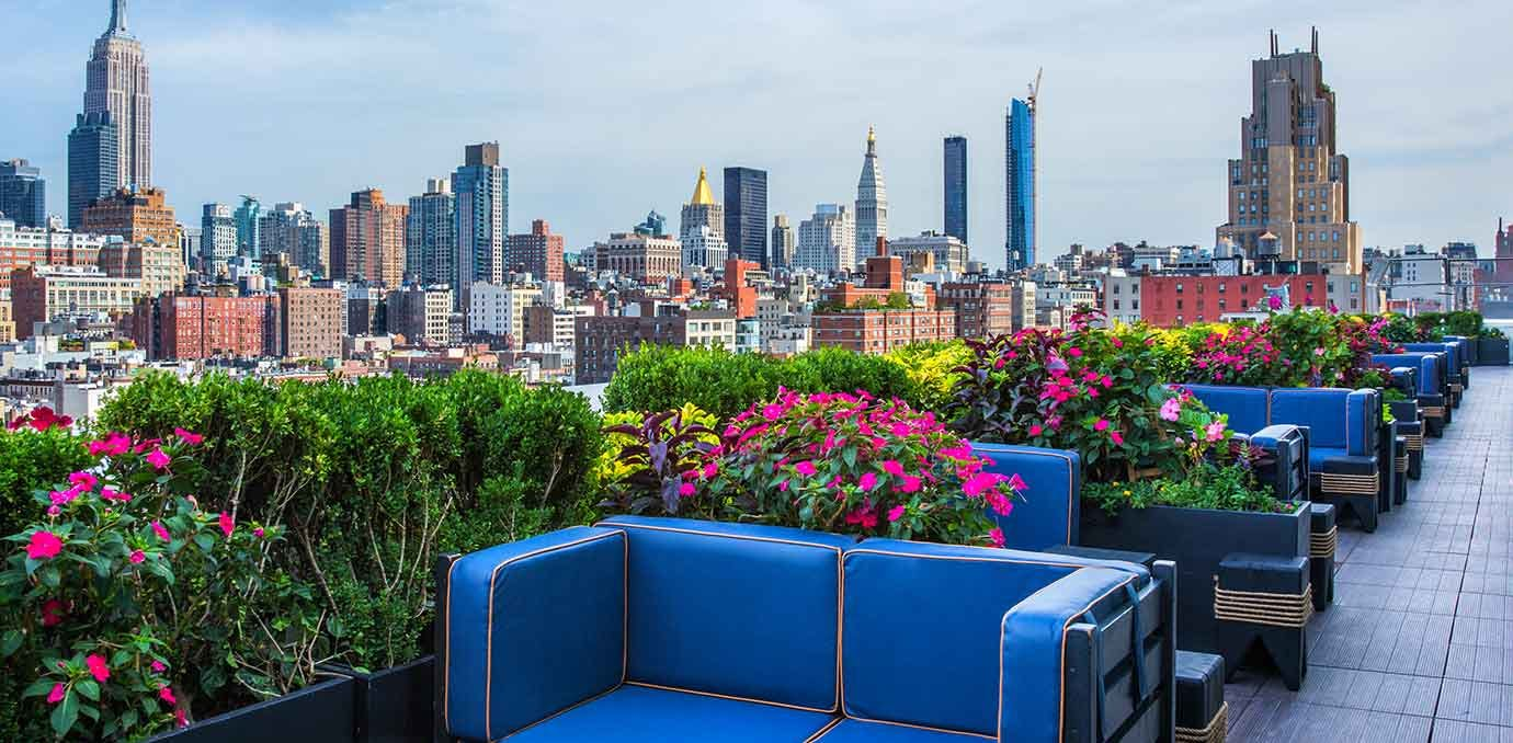 phd rooftop dream downtown nyc