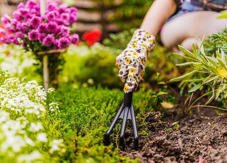 woman tilling soil