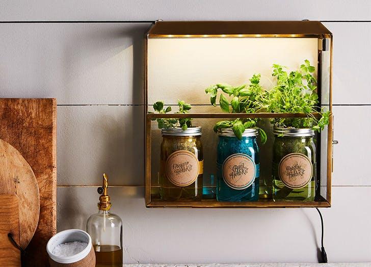 Food52 Herb Garden