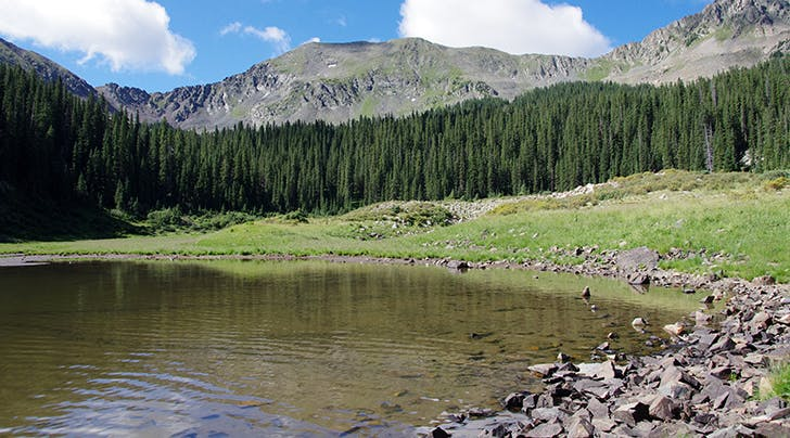 Williams Lake in new mexico