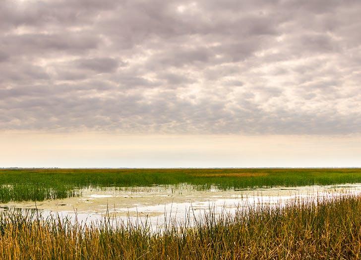 cheyenne bottoms wetlands in kansas