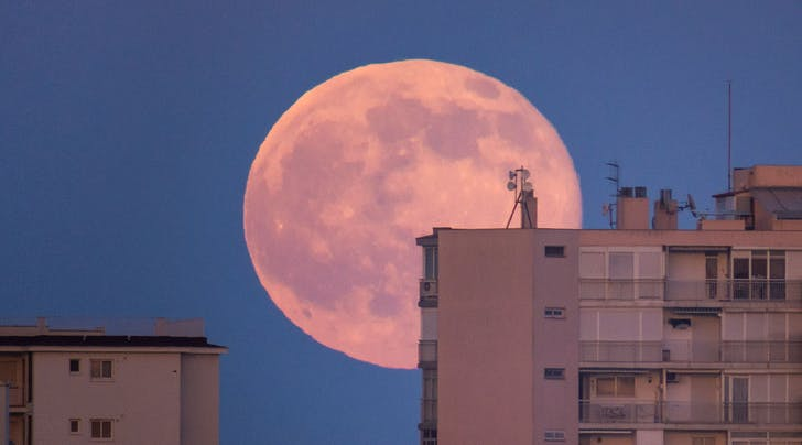 PSA: There's Going to Be a Full Strawberry Moon Tonight