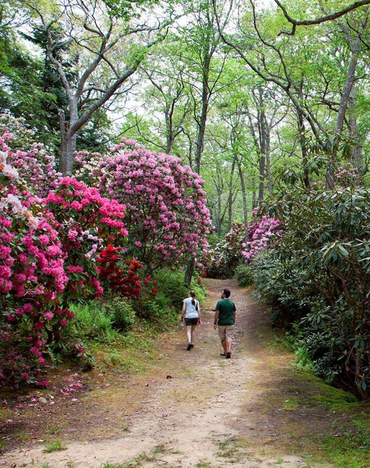 heritage gardens in massachusetts