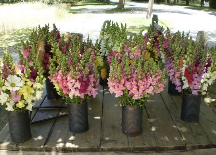 pike farmstand hamptons