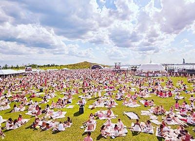 pinknic pink grass 400