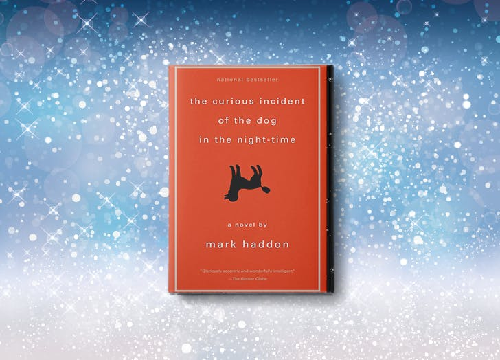 the curious incident of the dog in the nighttime mark haddon