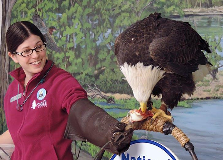 Minnesota National Eagle Center