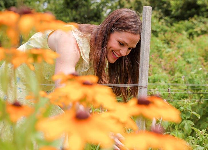Woman picking sunflowers garden