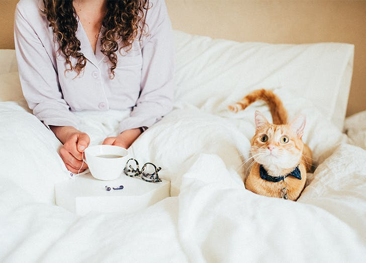 girl drinking tea with cat