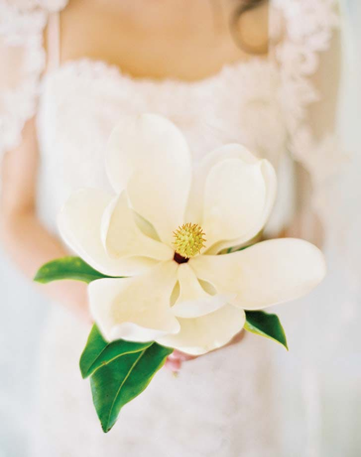 magnolia single stem bouquet