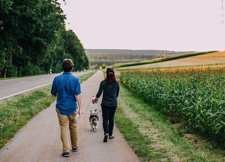 man and woman walking a dog
