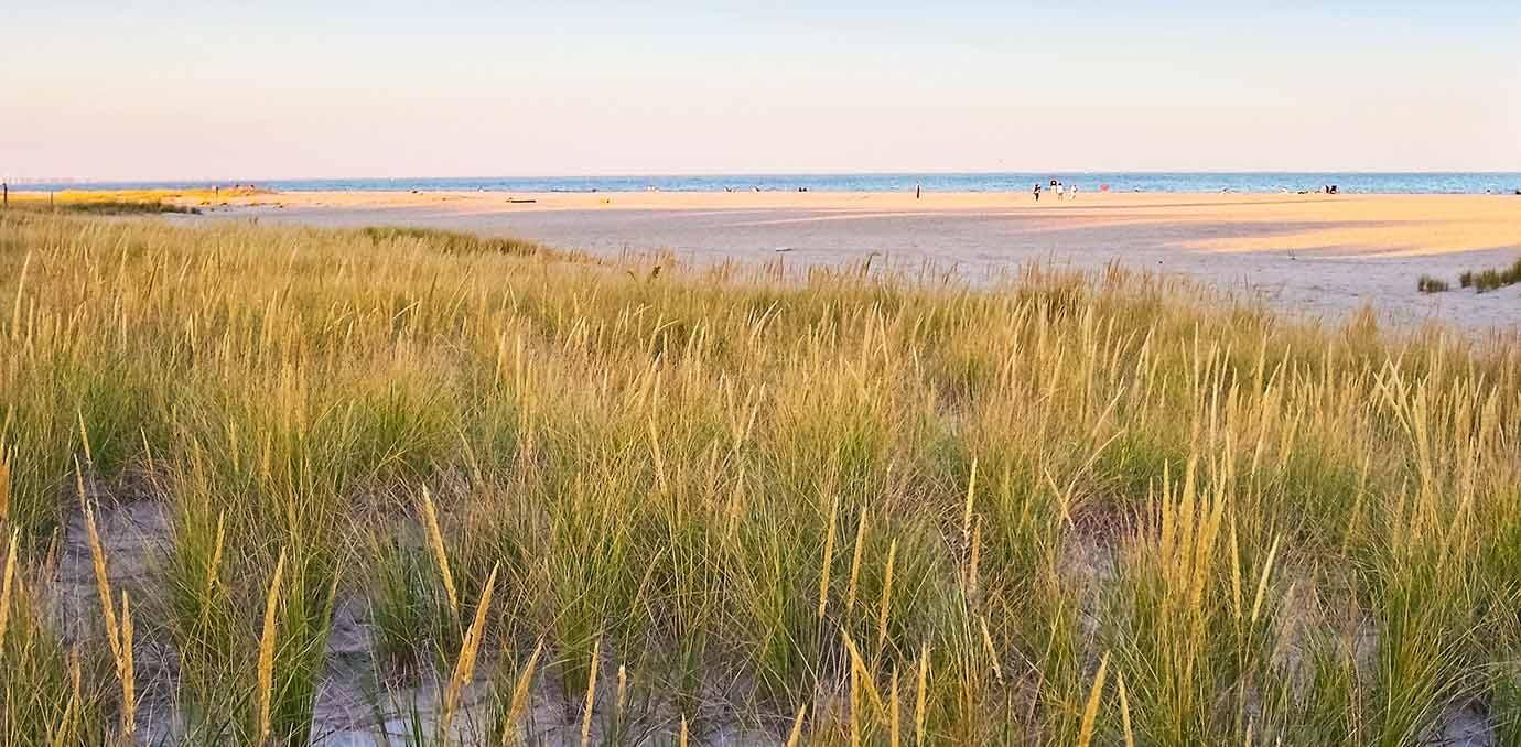 sandy hook beach nj