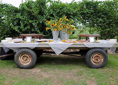 truck with sunflowers 400