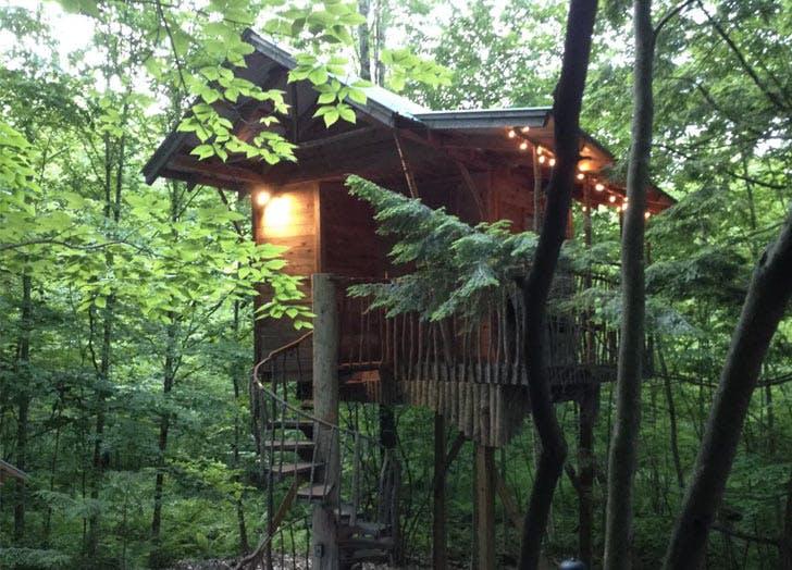 Adirondack tree house