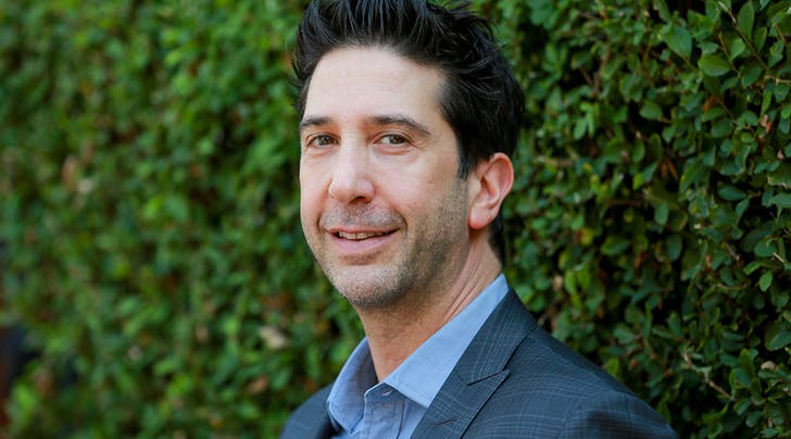 Breaking: David Schwimmer Signs on to Play Debra Messings Love Interest on 'Will & Grace