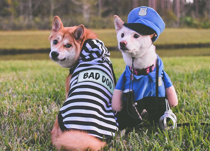 dogs cops and robbers costume