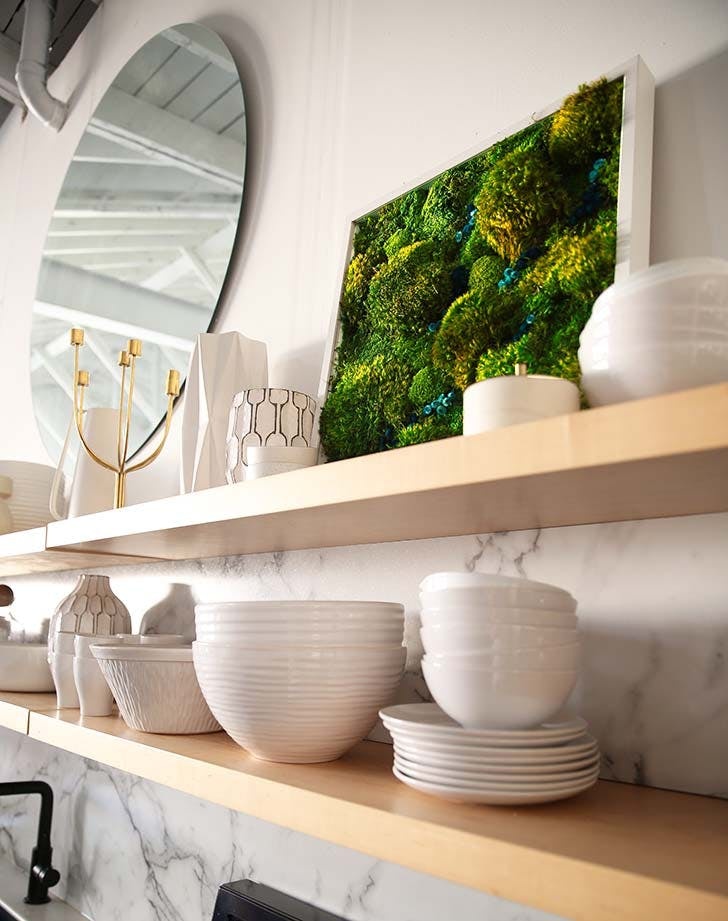 These No-Maintenance 'Plants' Are Having a Home Decor Moment