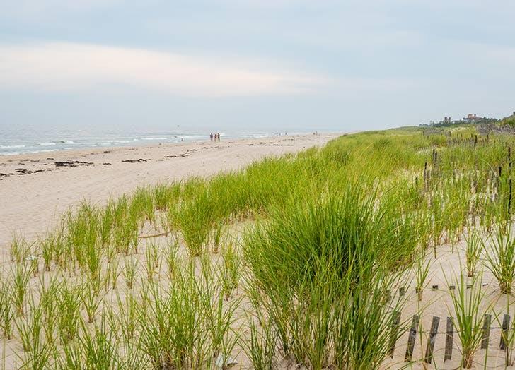 sand dunes beach ocean hamptons