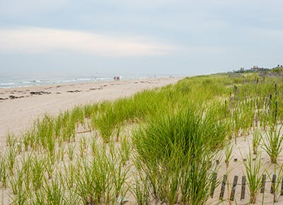 sand dunes beach oceans hamptons 4001