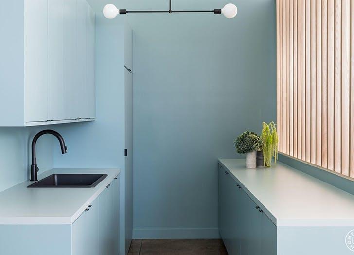 tina rich all blue kitchen plant