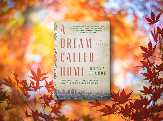 a dream called home