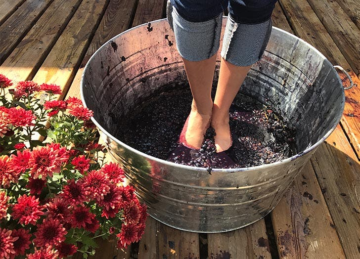 girl stomping grapes with feet flowers