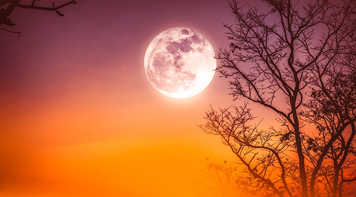 There's a Harvest Moon Coming, and This Is What It Means for You
