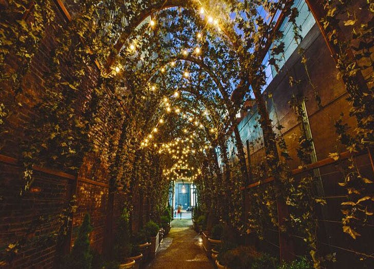 nomo soho lights vines